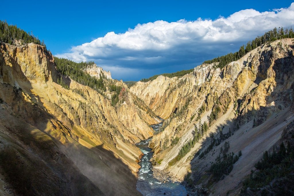 beautiful dramatic landscape at Grand Canyon of the yellowstone. Yellowstone river in the bottom, and tall canyon surrounding it. Sunny day in Wyoming