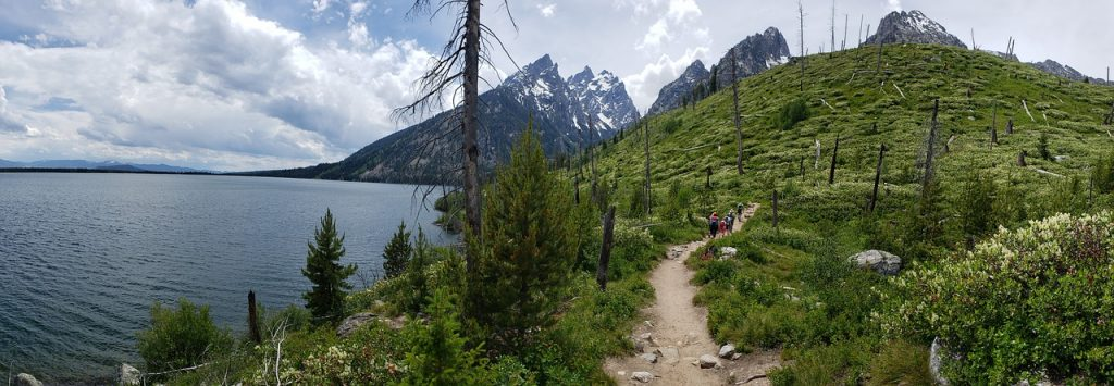 hiking trail next to Jenny Lake. Cloudy day in grand teton national park, the grand tetons can be seen in the distance behind a green hill.