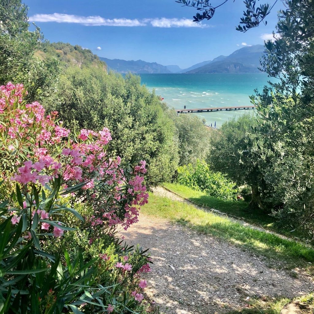 Beautiful green flowers and plants in front of crystal-clear Lago di Garda lake in north of italy. See the best parts of italy on our italy road trip itinerary.