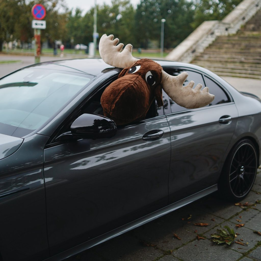 Rental Moose mascot sticking his head out of luxurious mercedes benz rental car in tallinn. Learn about rental car insurance when you rent a car with Rentalmoose, in our informative blog post.