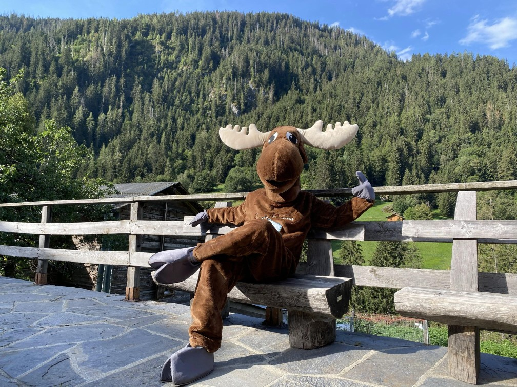 Rental Moose mascot sitting happily on a wooden bench overlooking the forest in Washington, United States. See Mount Rainier with the best Seattle day trips with Rentalmoose