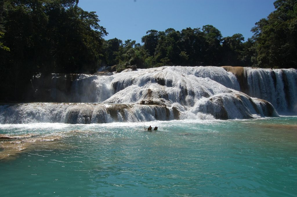 Agua Azul waterfalls in Chiapas, Mexico. Great sight to see on a mexico road trip.